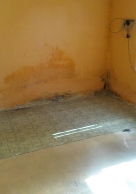 Foto č. 1: Vlhkost v místnosti před rekonstrukcí