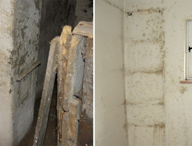 Stopy plísně a dřevokazných hub na stěnách některých místností v přízemí a v suterénu
